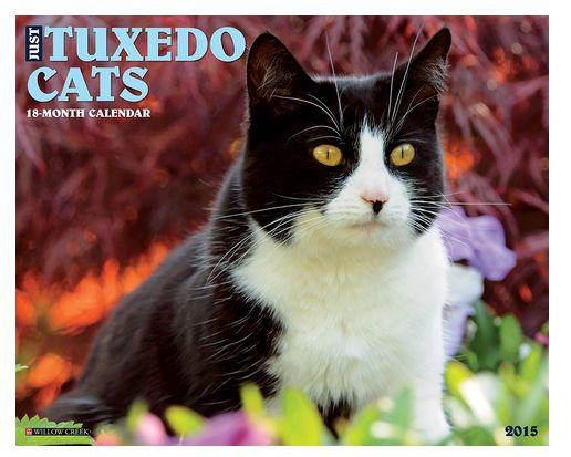 Tuxedo Cat Calendar 2015