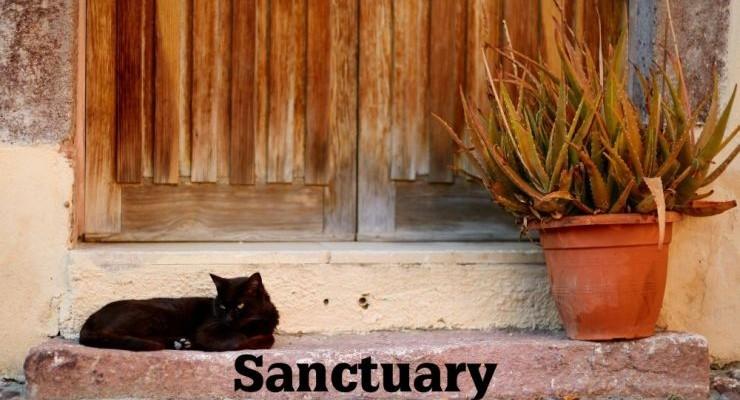 Selfie for Sanctuary
